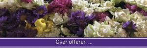 Header AR Blog 4 - over offeren
